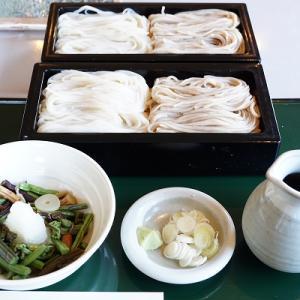 【手打ちそば四季】山菜おろし【ましゅれ】キャラメルパフェ