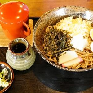 【cake & cafe collet】ソフトクリーム【ささ川】冷やしたぬき【小樽】