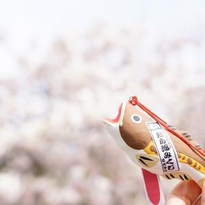 【真狩BASE】レギュラーモーニング【道の駅とようら】豊浦いちごソフトクリーム