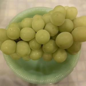 サイドメニュー&旬のお野菜