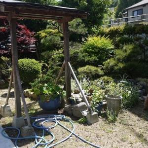 庭にソーラーボトルライトを設置