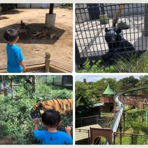 大森山動物園&大森山ゆうえんち アニパ