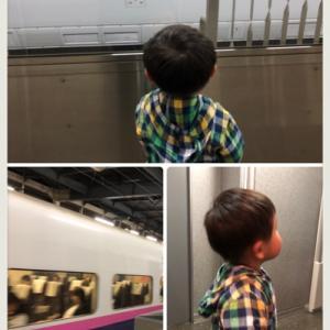 新幹線がよかった!