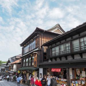 成田散歩と市川の梨を買いに行く