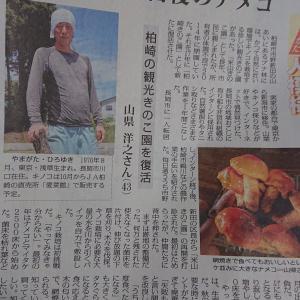 きのこ園を毎日新聞で取り上げていただきました。