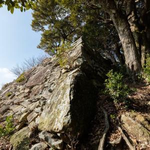 対馬 清水山城 [2/3] 山麓からも見えた、急斜面に築かれた二ノ丸高石垣へ。