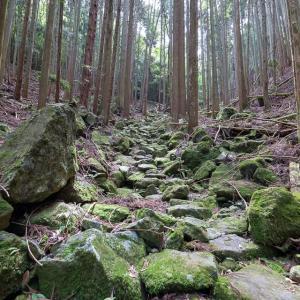 白旗城 [1/5] 比高400mにそびえる播磨守護 赤松氏の居城跡