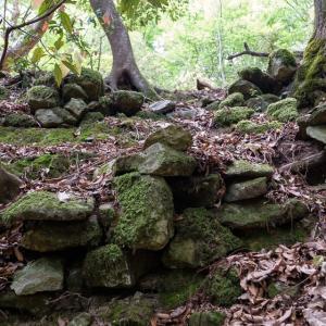 白旗城 [4/5] 周りを石垣で囲み庭園もあった伝・侍屋敷跡へ