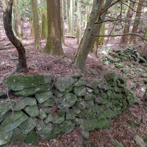 白旗城 [5/5] 東の谷筋を長大な石垣で遮断・削平した大手郭へ。