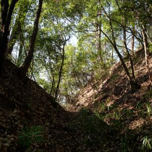 安威砦 : 明瞭な遺構が残る北摂地域の砦跡。