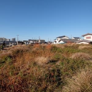 和泉 高井城 : 秀吉と戦った根来衆の城砦の一つ。