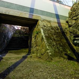 田辺城 : 水門跡のみが残る紀州徳川家付家老の平城。