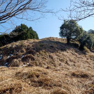 平須賀城 [2/2] 4段構成の曲輪に建物が並んでいた最深部の主郭群へ。
