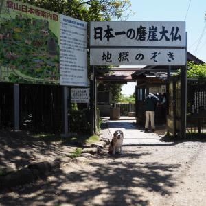 富士山を拝む最高の絶景を満喫し、カフェでも楽しみました。