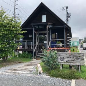 人気店一つ星からの、女優波留さんが紹介していた古民家deランチ。