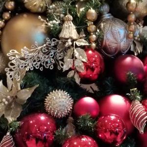 クリスマス前だから、お見合い数が急増!!!
