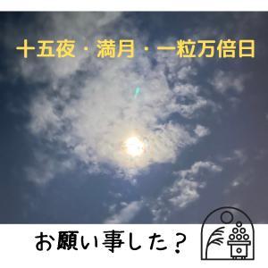 【それモラハラやん!】あなたの婚活はあなたの自由!!!!!