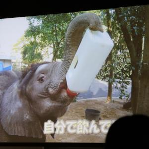 とべ動物園動物サポーターズーデー(1)