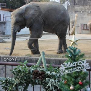 とべ家のクリスマス ~クリスマスリースのプレゼント~