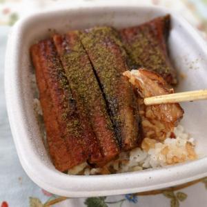 夏のスタミナ料理「鰻」!! 対決! どちらが美味い!! ~その②~