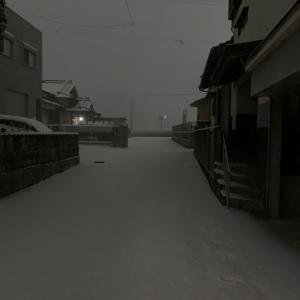 1月8日(雪)