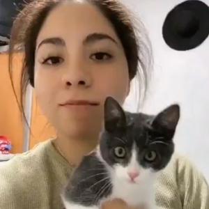 【動画】ネコ、飼い主の顔が変形して恐れ慄く