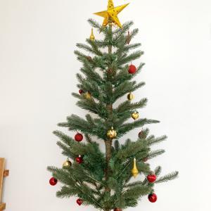 成長とクリスマスツリー♪