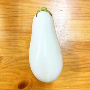 白い茄子!!