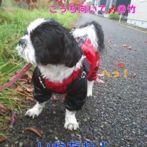 お空と雨の日(❤^^❤)*゜。♡♡