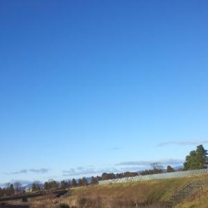 お空と金曜日はじまる(*^▽^*)♫♫◦。・
