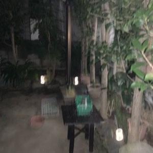 買ってあったソーラー・ガーデンライト設置