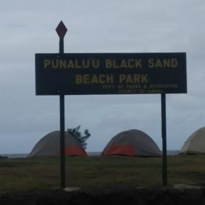 ハワイ島の旅(その4ー黒砂海岸から新しいビーチとボルケーノへ)
