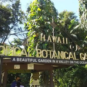 ハワイ島の旅(その5ー完)