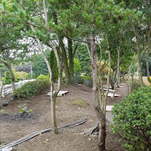 2019.9.21-22 タイ瞑想の湯(3) 9/21 午後の法話と瞑想