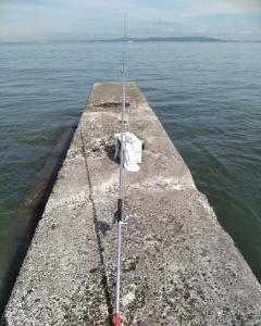 10月23日(水)、南知多、午後からキス投げ釣り。