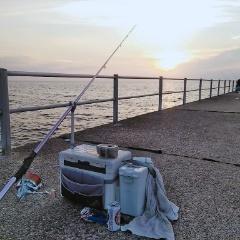 10月30日(水)、南知多で今、流行りの釣りを観に行く(後編)