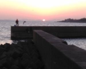 11月17日(日)、南知多でキス釣り終盤戦!!&11月の豊浜釣り桟橋ゴミ拾い報告