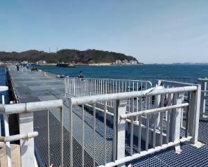 3月17日(水)南知多でいろいろ・・・からの入院Σ(・ω・ノ)ノ!