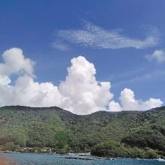 9月4日(水)、南伊勢にてイカダ釣り