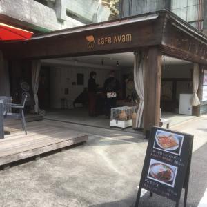 高知県巡礼の旅 最終日その2(Cafe Ayam編)