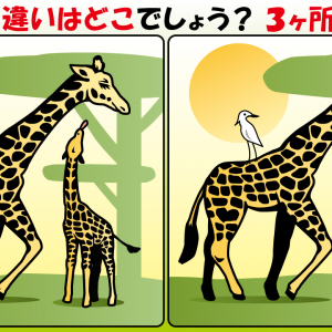 #07 サバンナの動物たちのイラストで間違い探し
