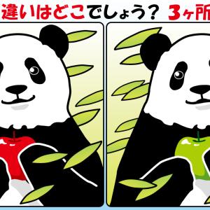 #09 パンダのイラストで間違い探し