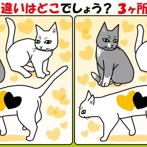 #12 猫のイラストで間違い探し