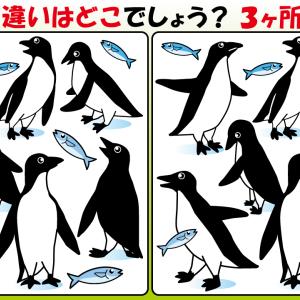 #15 ペンギンのイラストで間違い探し