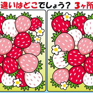 #19 イチゴのイラストで間違い探し