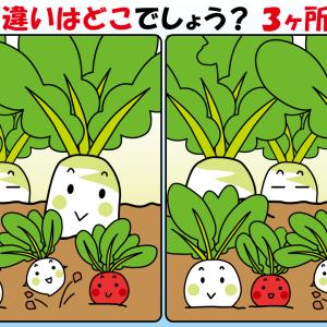 #21 野菜のイラストで【間違い探し】