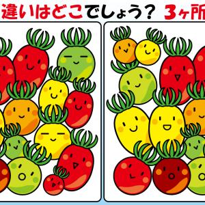 #24 ミニトマトのイラストで【間違い探し】