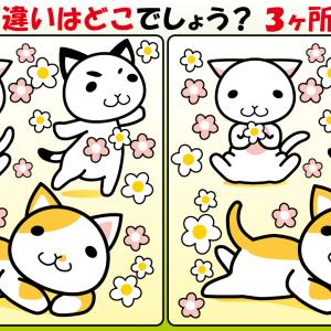 #30 子猫のイラストで【間違い探し】