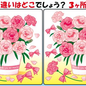 #43 お花のイラストで【間違い探し】