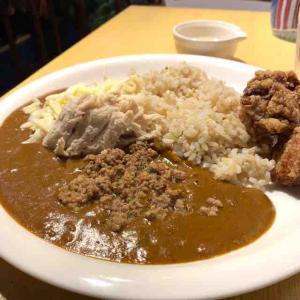 トリコカレーの日替わりecoランチ、肉トリオに大満足。(トリコカレー(Tricocurry)@中野)